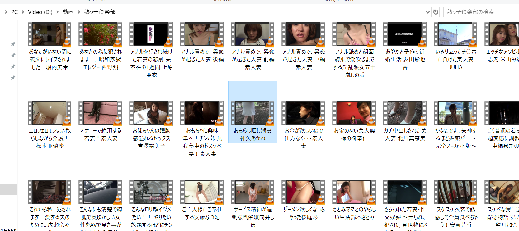 some of the JAV SEX videos I downloaded