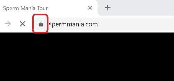 ザーメンマニアがSSLで暗号化されている証拠画像